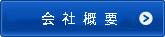 Company Profile button